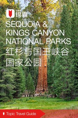 红杉与国王峡谷国家公园穷游锦囊