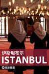 伊斯坦布尔穷游锦囊
